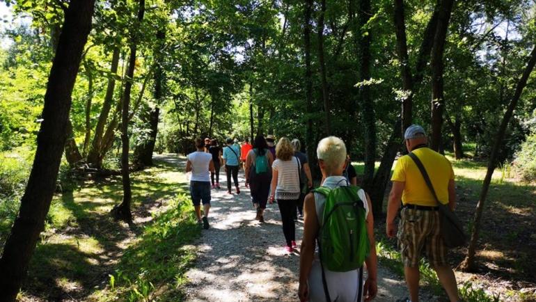 Mindfuln Walking la camminata consapevole…FAI