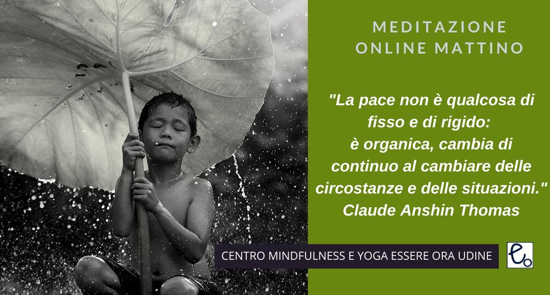 Pace: un brano  di Claude Anshin Thomas per la meditazione online del mattino